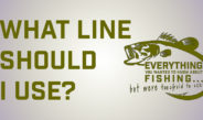 What Fishing Line Should I Use?