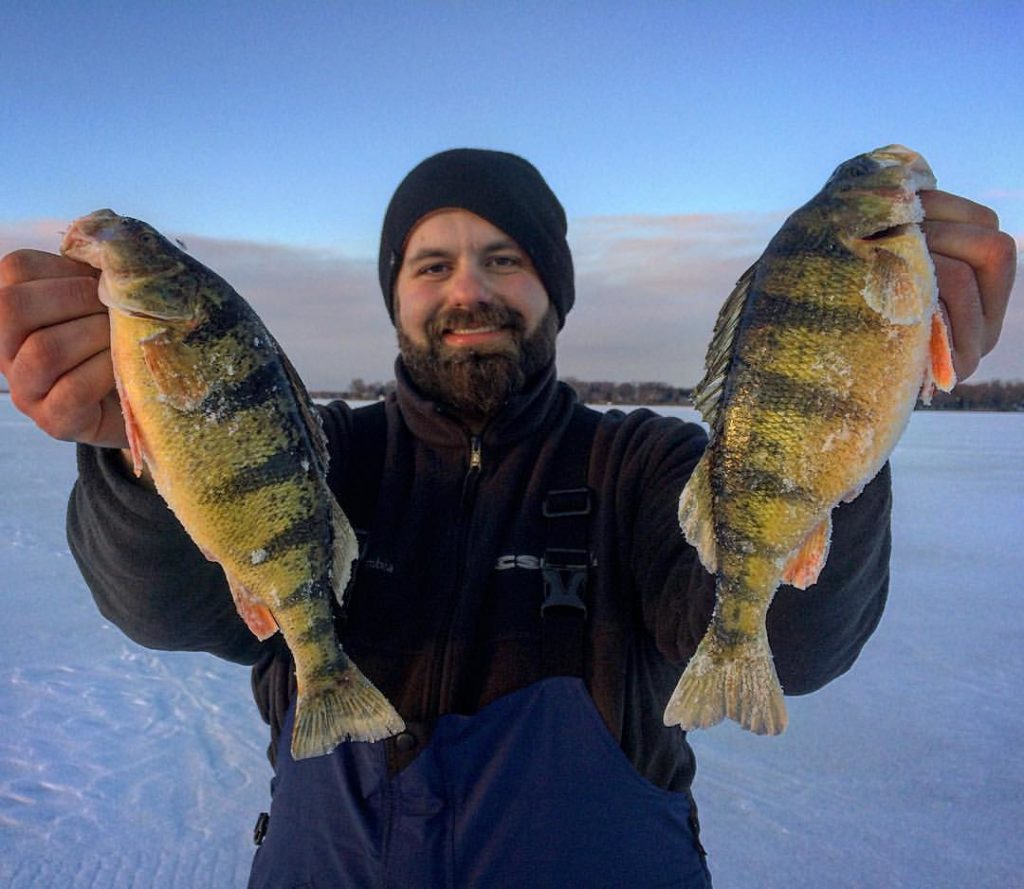 Live 2 Fish Ice Fishing for Lake Simcoe Perch Articles Ice Fishing